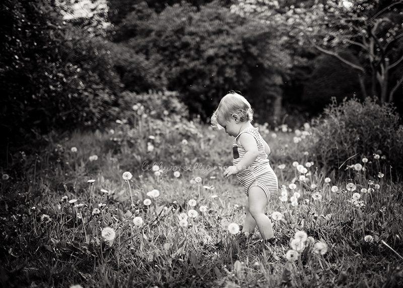 Dandelion Wishes Signature Photoshoot
