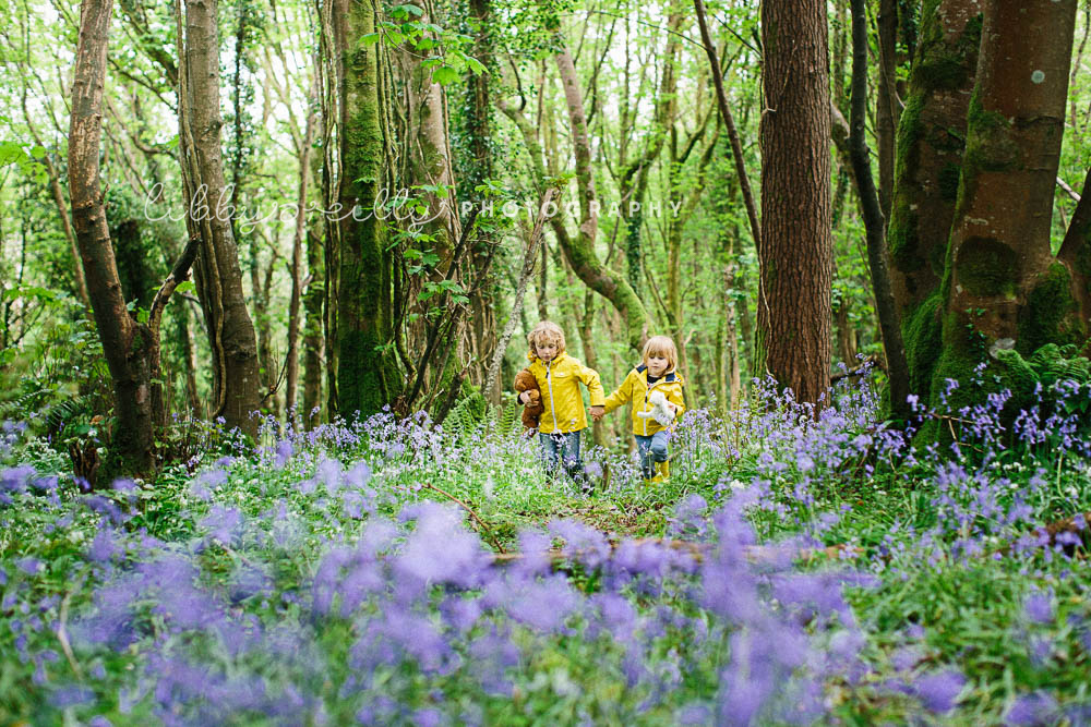Bluebell Woods – Child Photography